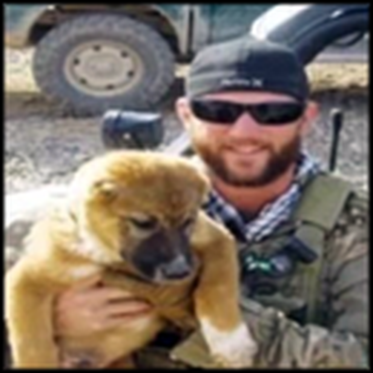 This Puppy Was Tortured Mercilessly - But Then Saved by a Soldier