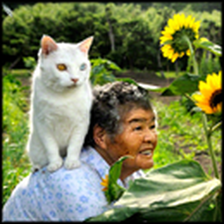 Touching Friendship Between an Old Woman and Her Cat