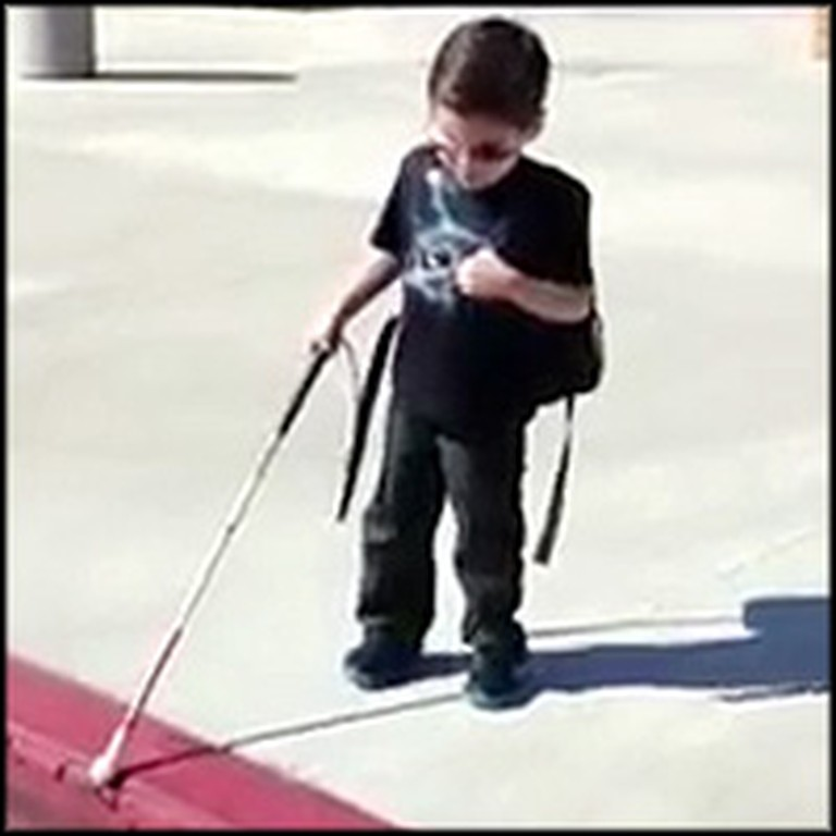 Blind 4 Year-Old Bravely Walks With Cane for First Time