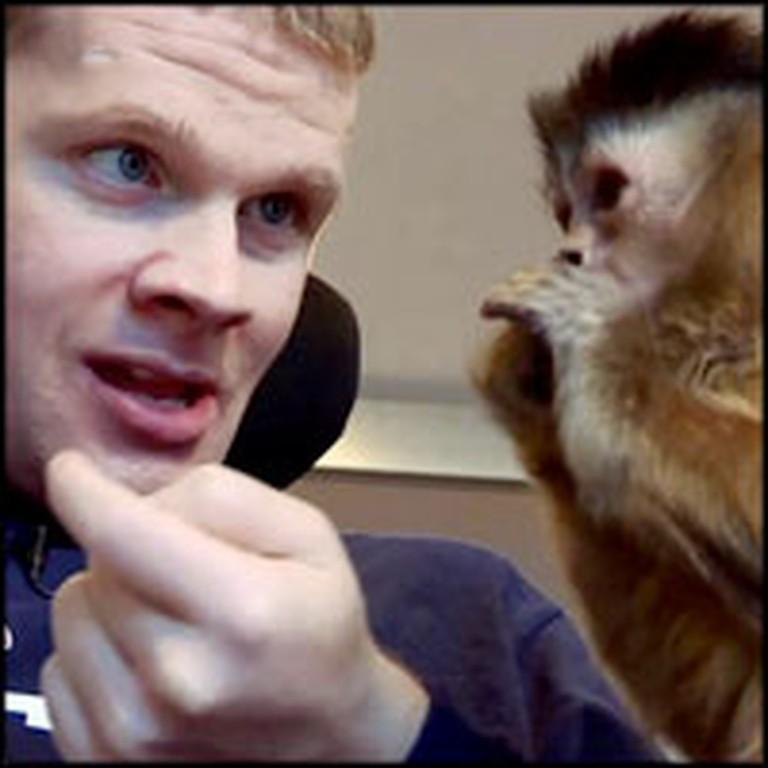 Amazing Monkey is a God-Send to a Young Man With Brain Trauma