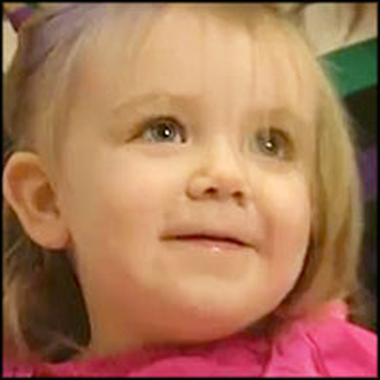 Toddler Miraculously Survives a Pencil Piercing Through Her Eye and Brain