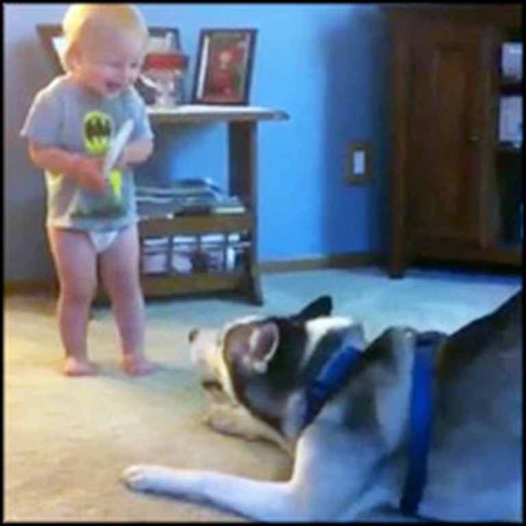 Baby and His Husky Have an Adorable Deep Conversation