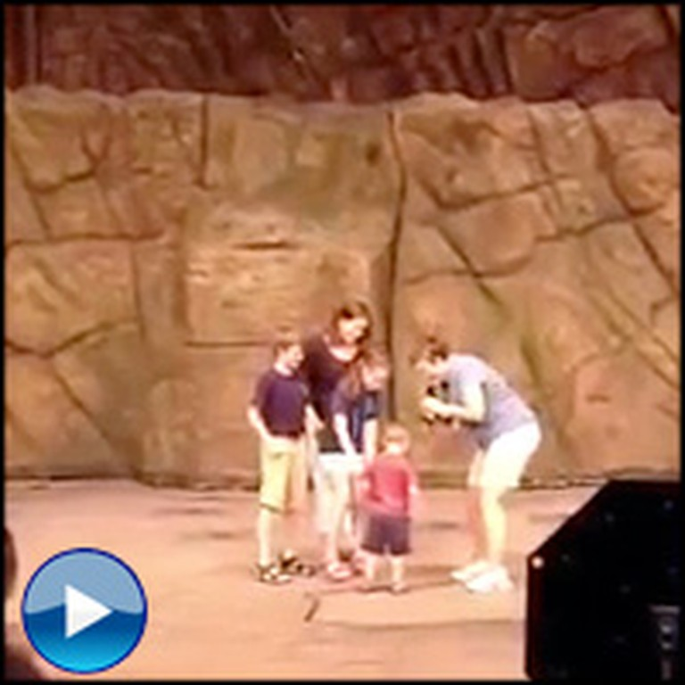 Kids Are Surprised by Their Soldier Father Onstage - Their Reaction is the Best