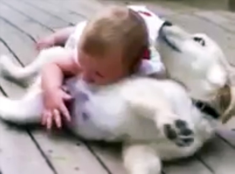 Adorable Baby and Puppy are SO Excited to Play Together - Awww!