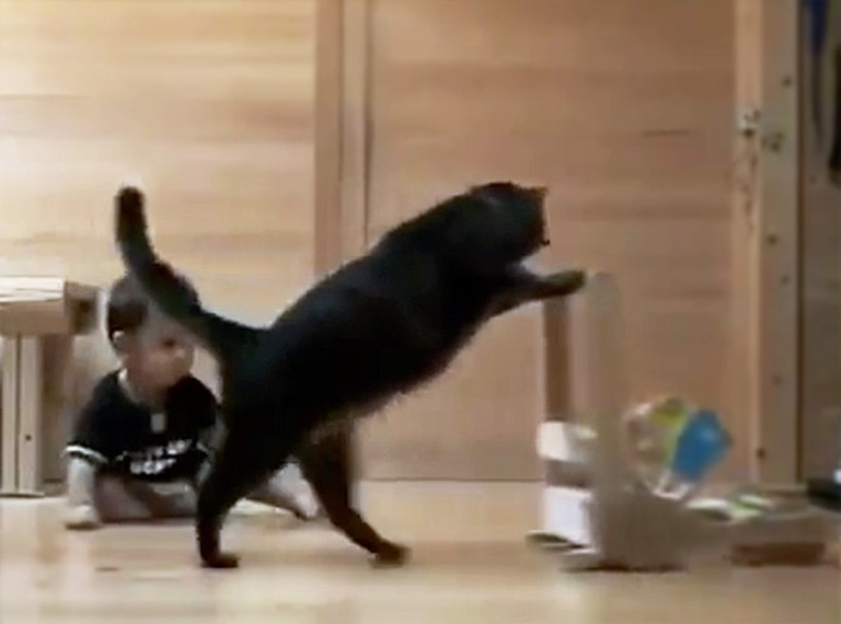 Smart Cat Teaches a Baby How to Walk - This is Just Too Much!