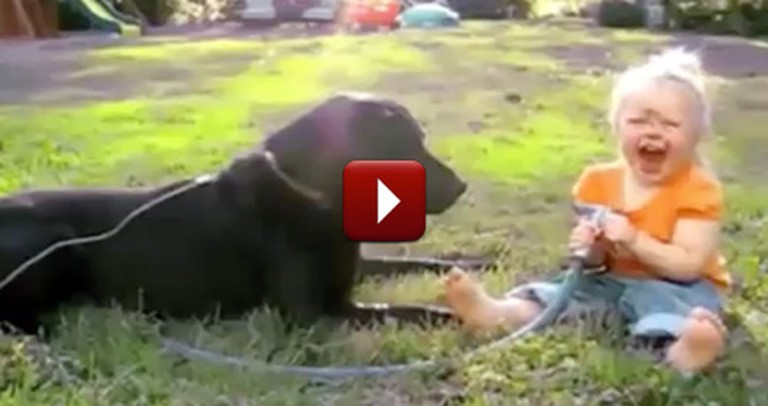 Babies and Dogs Become Best Friends for a Reason - They LOVE Each Other