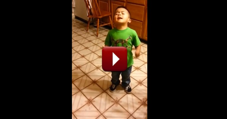 Adorable 3-Year-Old Gets in a Heated Debate Over the Funniest Thing