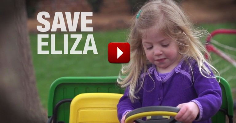 Here Is Your Chance to Save Eliza's Life.  All You Have To Do Is Click.