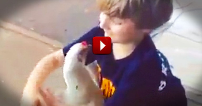 This Boy's Clearly Not Chicken.  And That's No Ordinary Hen!