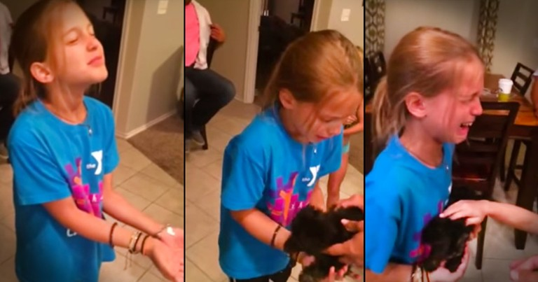 What Caused This Complete Meltdown Will Completely Melt Your Heart. Best. Surprise. EVER!