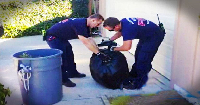 These Firefighters Have Put Down The HOSE For Gardening HOES. And You'll Love WHY They Did It!
