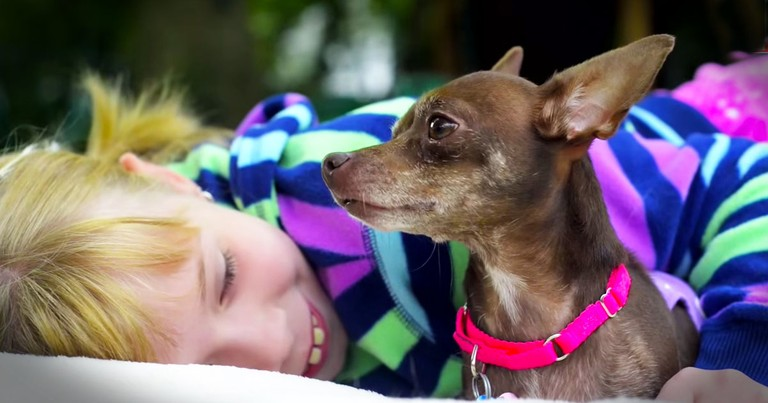 This Deformed Rescue Dog Was Homeless. Until She Met A Girl Who Saw Her Through Love's Eyes!