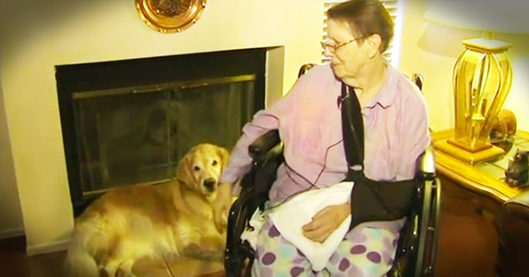 When This 76-year-old Fell And Was Stuck For 2 Days She Was Saved By 2 Furry Angels. WOW!