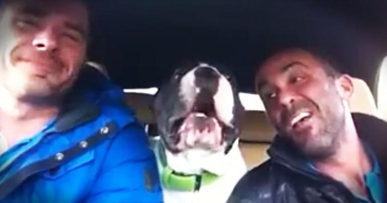 Dog 'Sings' His Favorite Praise Music