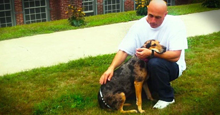 Abandoned Dogs Find Love In An Unlikely Place--Prison!