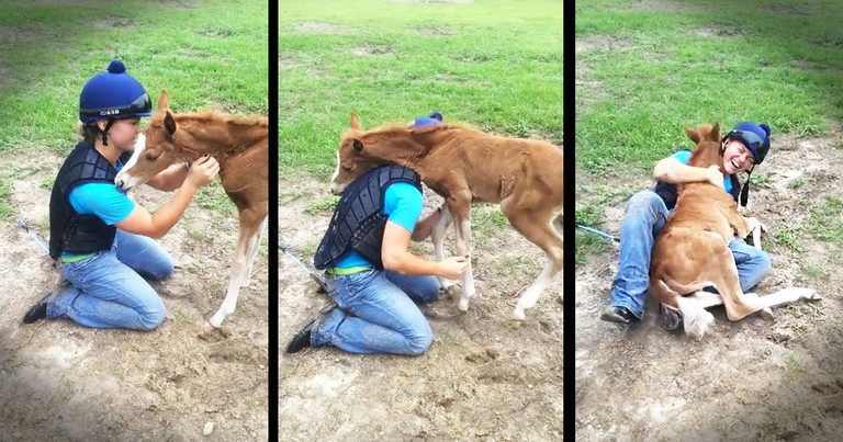 Apparently, This Horse Is A Little, Tiny Bit Friendly--Awww!