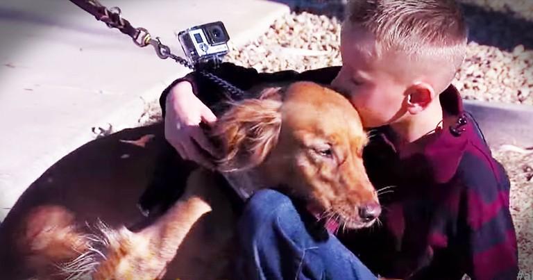 He Had No Friends Until Total Strangers Got Him A Dog!