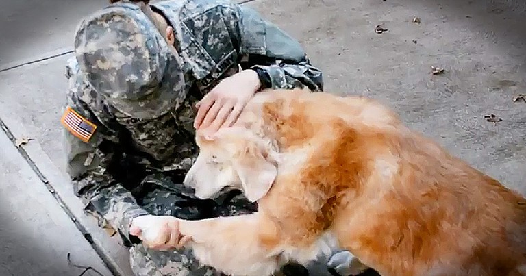 Dog's Reaction To His Favorite Soldier Is Too Cute