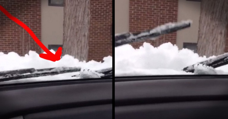 Man Singing To His Windshield Wipers Will Make You LOL