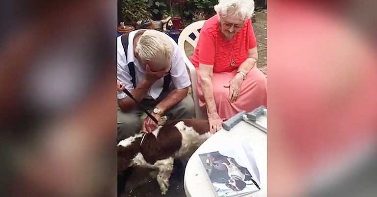 This Family Surprised Their Grandpa With A Dog After He Loses His Beloved Friend, And I'm Crying!