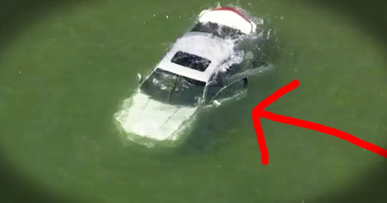Good Samaritan Jumps Into Lake Risking His Own Life To Save A Stranger
