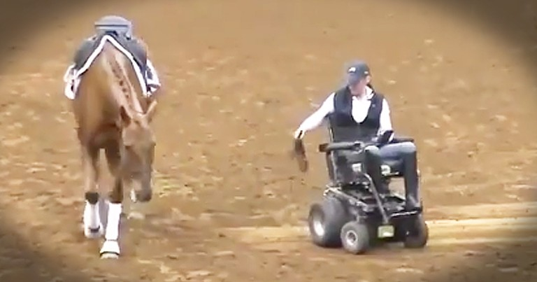 Paralyzed Woman And Horse Share An Unbreakable Bond