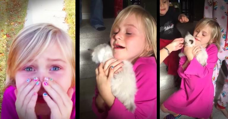 Little Girl Getting Her Own Kitten Is The Sweetest