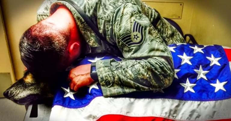 Former Military Dog Gets Hero's Send Off