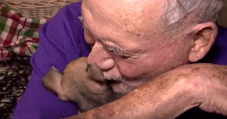 An Attack Killed His Dog, Injured His Wife And Gave This Man A Heart Attack But Now The Tears Are Ha