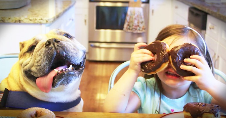 4-Year-Old Girl And Her Adorable Dog Are Inseparable