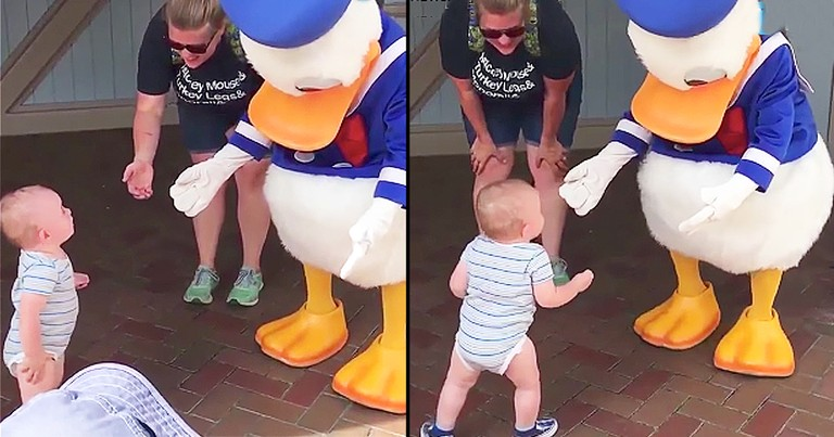 Donald Duck Helps Baby Walk For The First Time