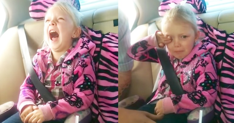 5-Year-Old Adorably Reacts To News Of Getting A Kitten