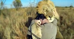 One Man Shares Hugs with One of God's Most Powerful Creatures - Amazing