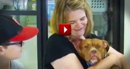 What This Pup And Her New Mom Share Is Incredible. This Match Was Made In Heaven!