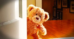 Touching Film of a Teddy Bear's Excitement Over a New Baby