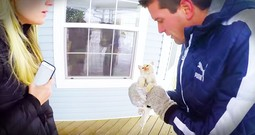 Frozen Kitten Gets A Nail-Bitting Rescue