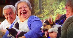Playful Puppies Bring Smiles To Retirement Home