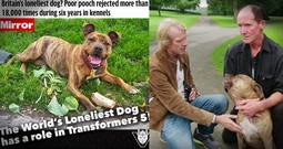 The Loneliest Dog Just Got A Home And A Staring Movie Role