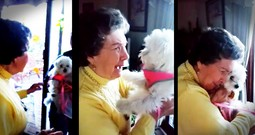Grandma Has The Sweetest Reaction To Her Surprise Puppy
