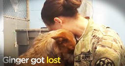 Dog Who Got Lost Reunites With Her Momma With The Sweetest Snuggles