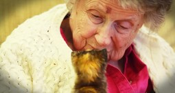 Nursing Home Seniors Are Saving Kittens In The Most Beautiful Way