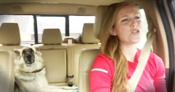 Dog Hilariously Takes Over Car Lip Sync