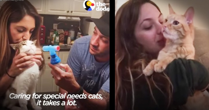 Incredible Couple Dedicates Their Home To Special Needs Cats